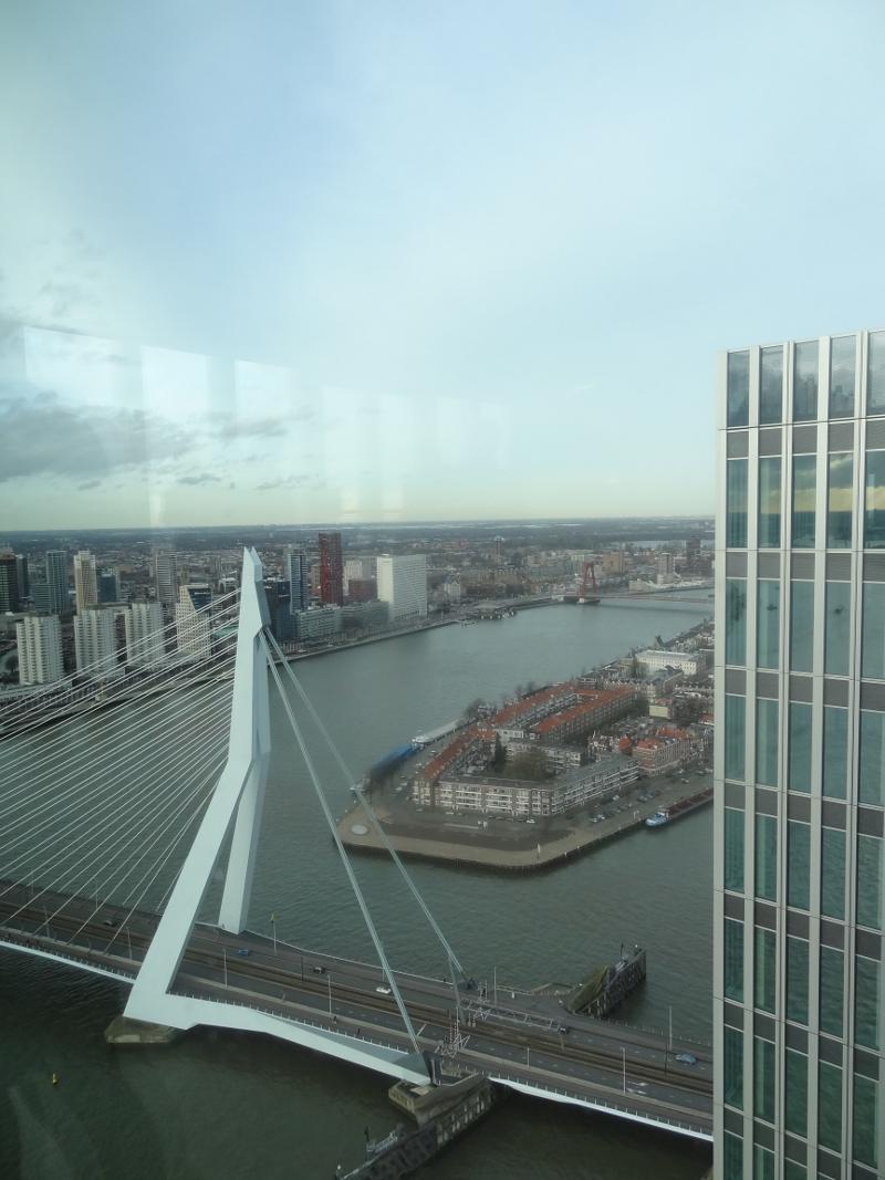 z Rotterdam, uitzicht