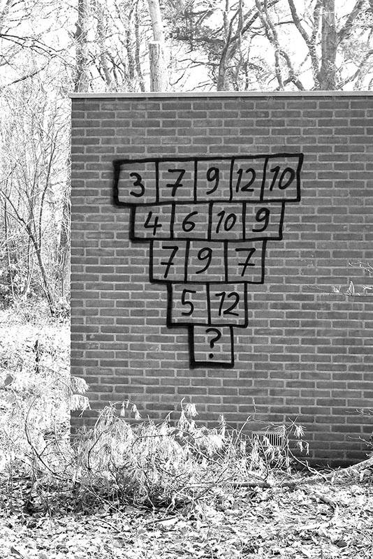 web-puzzel naar keuze
