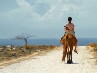 Post IFFR: boeiend drietal films met politieke lading